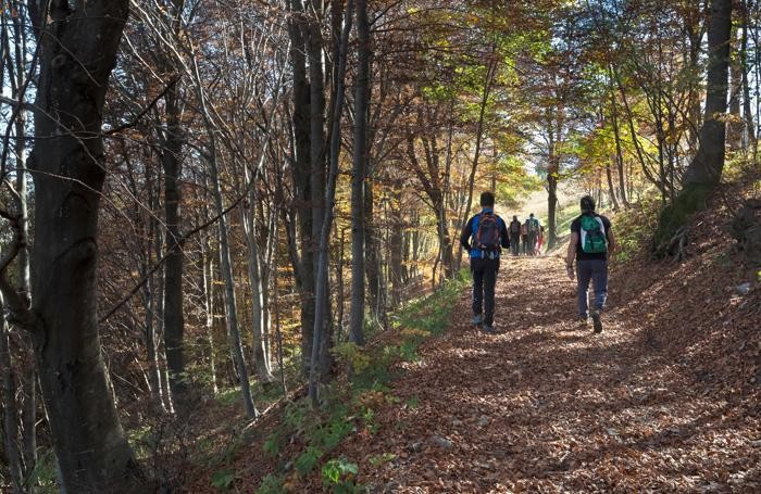 Escursionisti in un bosco d'autunno