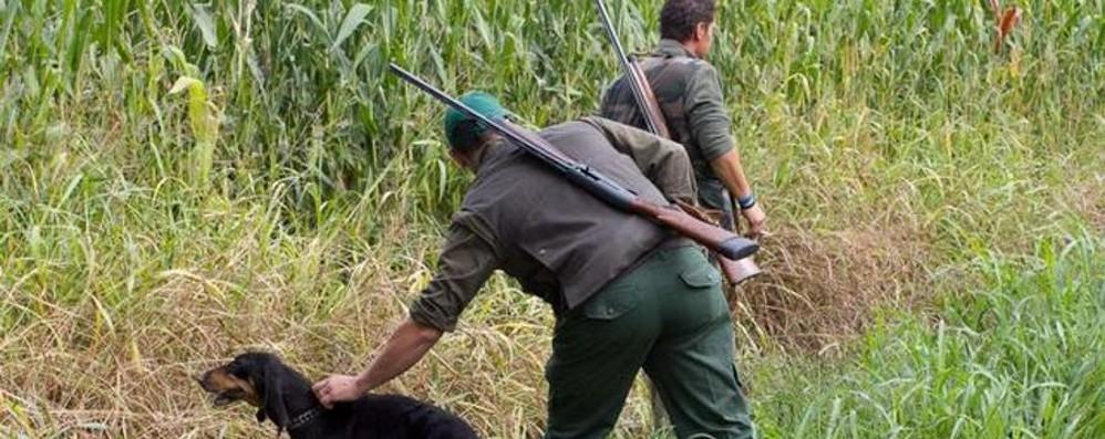 Stop alle leggi pro caccia Regione «impallinata»