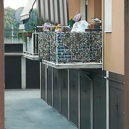 Zingonia, una bicicletta sul balcone  Bimba di 3 anni cade dal 1° piano: è grave