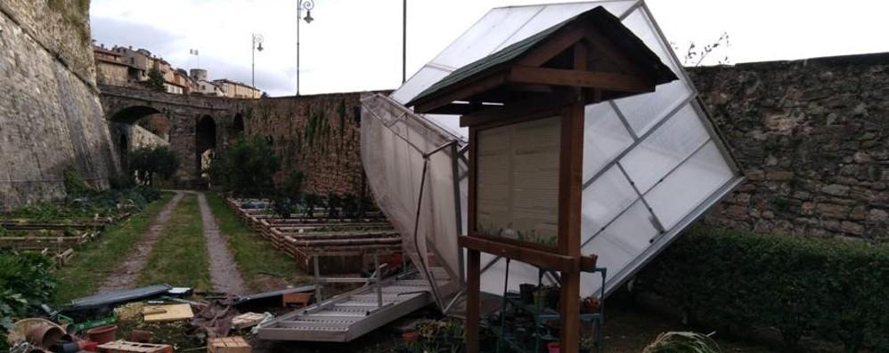 L'orto di Città Alta devastato Elettricità ko, detriti e alberi abbattuti