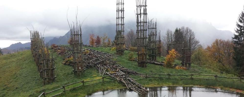 Maltempo, danni per milioni nei Comuni La cattedrale vegetale distrutta dal vento