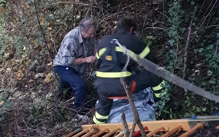 Cade in una scarpata a Cirano Soccorso un Border Collie: Buk sta bene