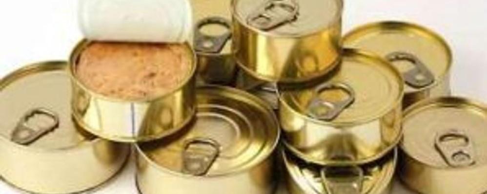 Ruba e nasconde 80 confezioni di tonno  Treviso, denunciato 25enne bergamasco