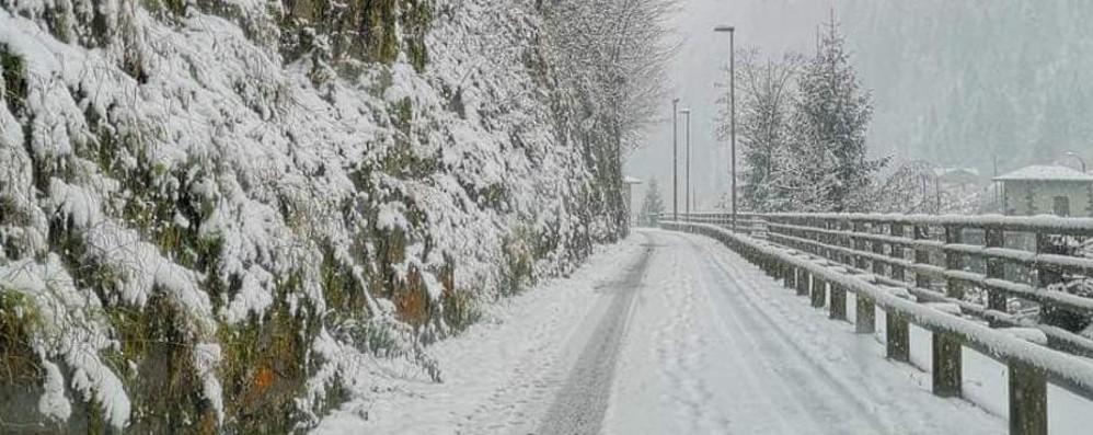 È arrivato il primo grande freddo Attesi fiocchi di neve a bassa quota