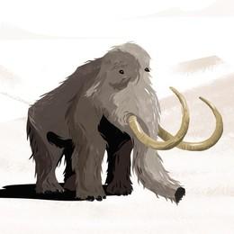 Il mammut si anima e «esce» dal museo Il «Caffi» celebra i 100 anni con un video