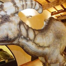 I dinosauri finiscono in procura   Indagine sull'appalto della mostra