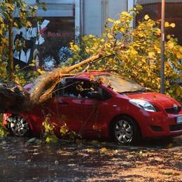 La Regione chiede lo stato di calamità «In Bergamasca danni per 12 milioni»
