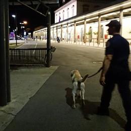 Stazione, blitz antidroga con i cani Controllate 50 persone, due arresti