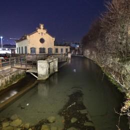 Caccia al ladro che si tuffa nel fiume  Valbrembo, i cittadini aiutano a cercarlo