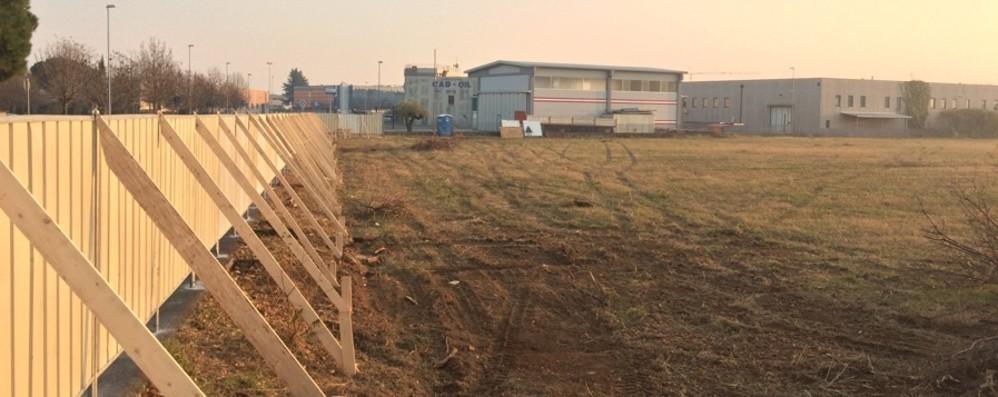 Spesa on line, capannone a Lallio Il 50% dei lavoratori assunto tra i residenti