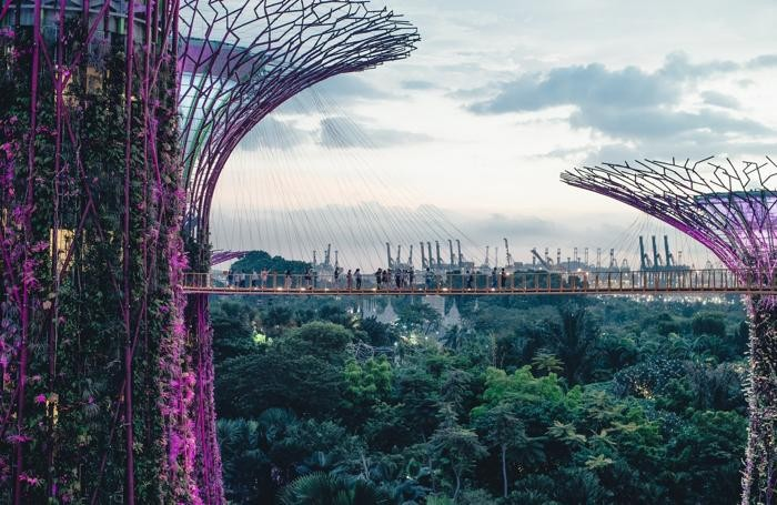 Gardens By the bay: la foresta tropicale di Singapore