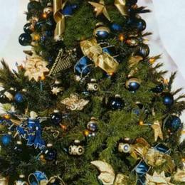 Come curare il tuo albero di Natale? Ecco cosa fare (anche dopo le feste)