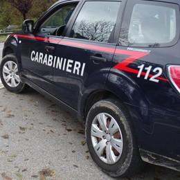 Rapine con spray e fionde anche a Bergamo Arrestato il capo della banda a Asti