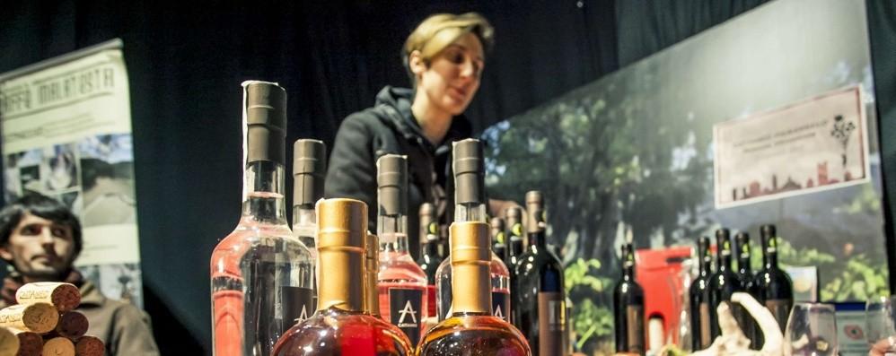 A Bergamo «Vite in libertà» Fiera dei produttori di vino indipendenti