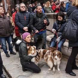 Anche i suoi amici cani per l'ultimo saluto Folla a Seriate per Stefano Viganò