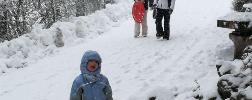La neve è arrivata, fiocca dall'alba Guarda le foto dalla Val Seriana