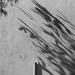Seriate, fotografia leggera «Sei progetti» di Luigi Vegini