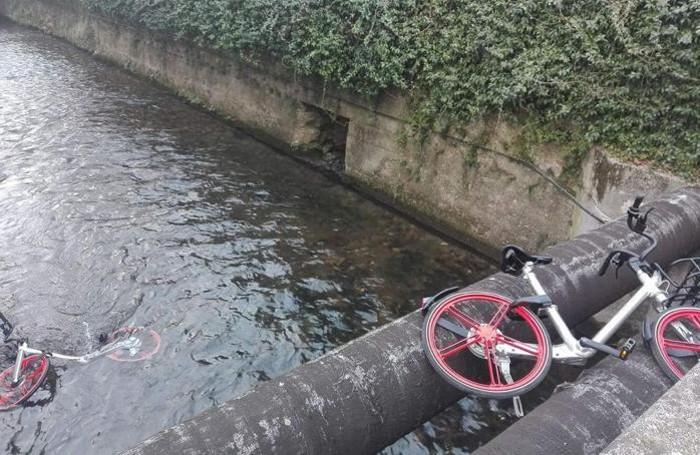 Mobike nel Morla la foto scattata sabato 17 febbraio in mattinata da Fulvio Fucili