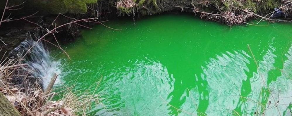 Il torrente si colora di verde? «Ma non è un inquinante»