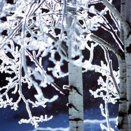 In arrivo il freddo record dalla Siberia Sulle montagne lombarde fino a -15