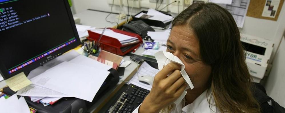 Raffreddore da fieno?   La prevenzione comincia d'inverno