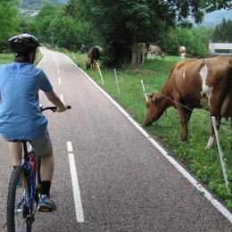 Da Bergamo a Piazza Brembana in bici Assegnati i lavori, il sogno presto realtà