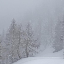 Ancora fiocchi in Val Seriana - Foto E in pianura è arrivata la pioggia