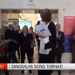 Museo Caffi, sono tornati i dinosauri. Primi favorevoli riscontri