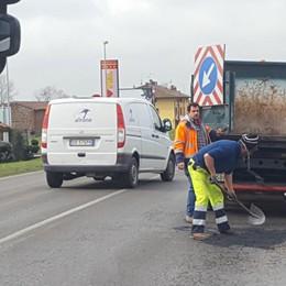Buche, danni all'auto: spesa da 150€ in su  «Ma per sistemare le strade serve tempo»