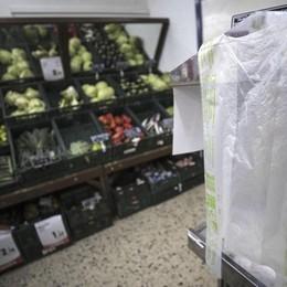 Sacchetti alimentari, le risposte ai dubbi Ecco la guida del Ministero dell'Ambiente