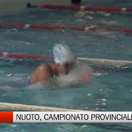 Csi, nuoto campionato provinciale