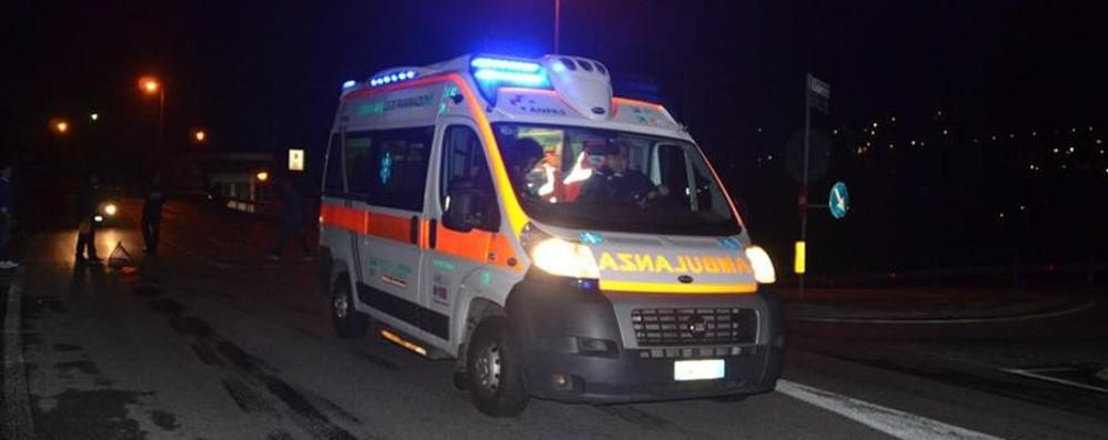 Investe una mucca a Casnigo 25enne trasportata in ospedale