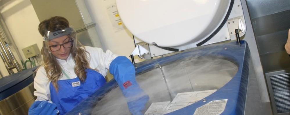 I segreti del corpo umano nel «caveau» Inaugurata la Biobanca al Papa Giovanni