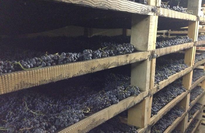 Il Moscato di Scanzo sbarca in Giappone Buon vino e bellezza di ...