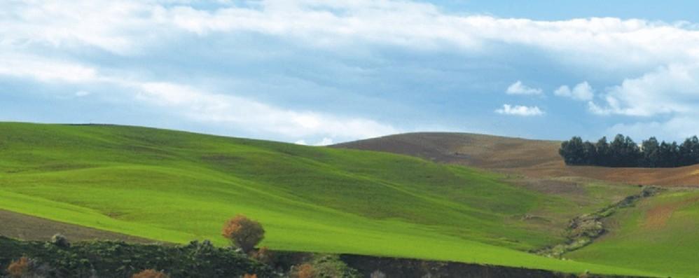 Ue resta divisa su futuro politica agricola