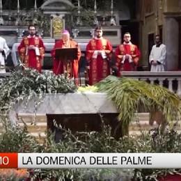 Le celebrazioni per la Domenica delle Palme