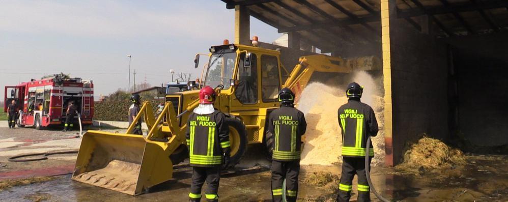 Bolgare, incendio in un centro ippico Salvati dalle fiamme 70 cavalli