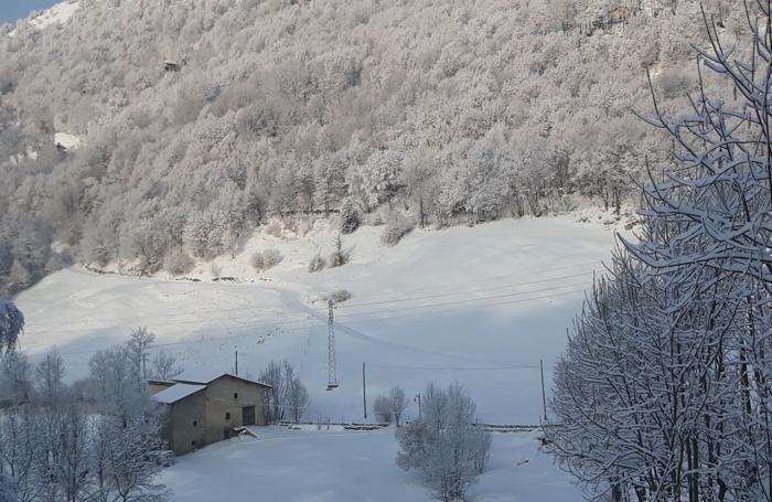 Salmezza magica sotto la neve