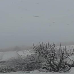 Che nevicata a Zambla Alta!