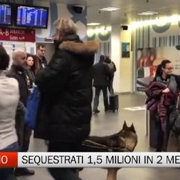 Orio, da gennaio sequestrati 1,5 milioni di euro