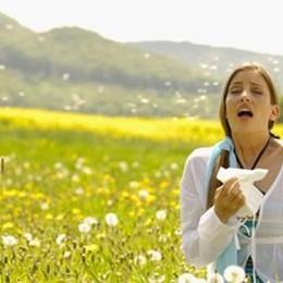 Cambia il clima anche a Bergamo E sono in arrivo nuove allergie