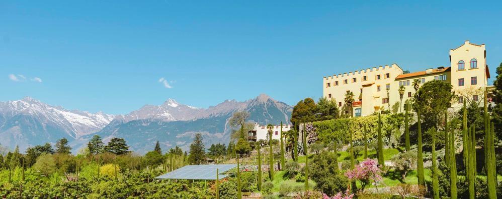 A castel lincanto dei giardini fioriti with giardini - Foto di giardini fioriti ...