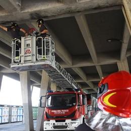 Viadotto di Boccaleone più sicuro In estate lavori da 800 mila euro