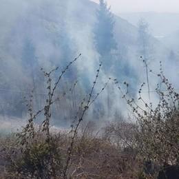Incendio nei boschi di Aviatico Vigili del fuoco in campo per spegnerlo