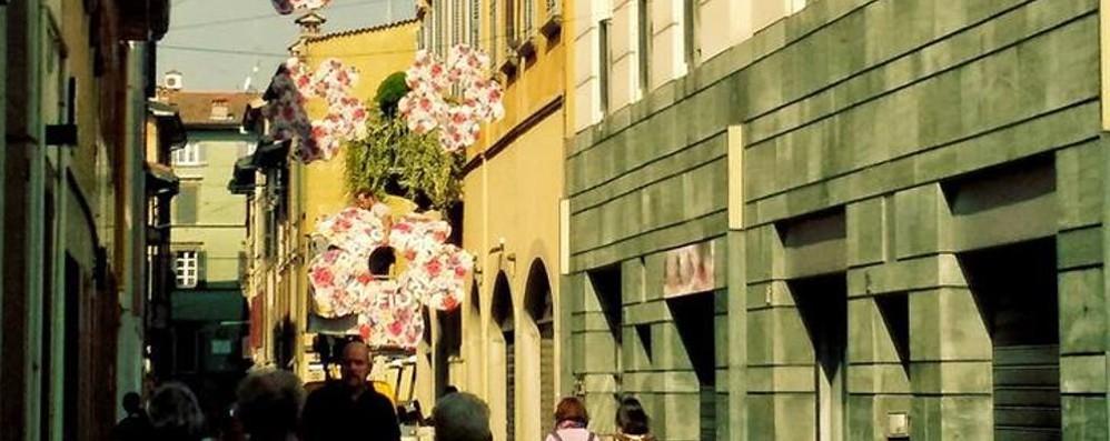 Fiori appesi colorano le vie del centro Dal 1°maggio c'è «Bergamo in Fiore»