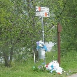 «Che brutta figura anche in Val Seriana» Rifiuti abbandonati sulla ciclabile - Foto