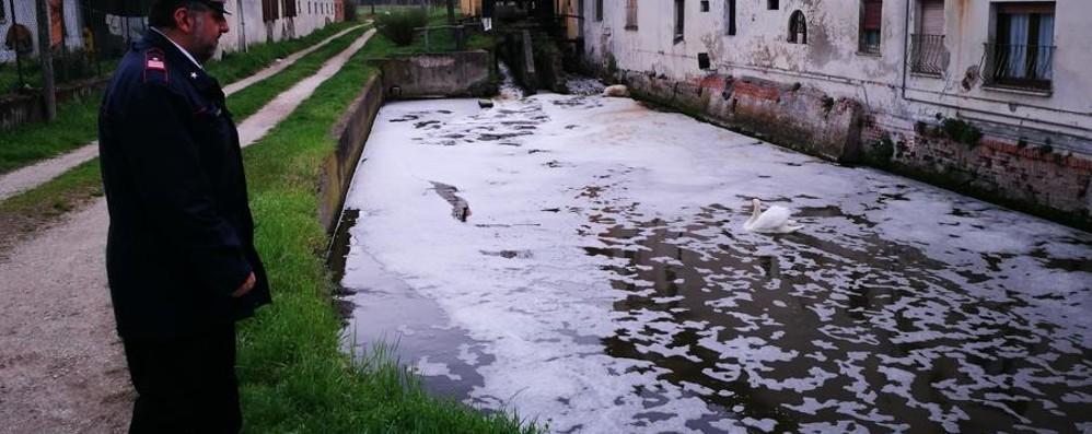 Vandali inquinatori a Caravaggio Acque contaminate fino al Serio