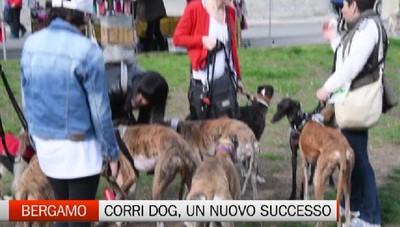 Bergamo - Un nuovo successo per la Corri Dog