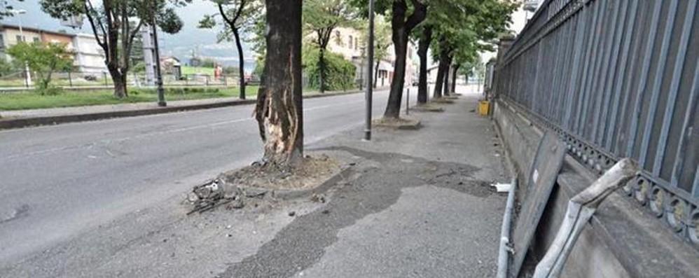 Tragedia a Pisogne, auto contro un albero Muore 54enne di Lovere, ferita 47enne