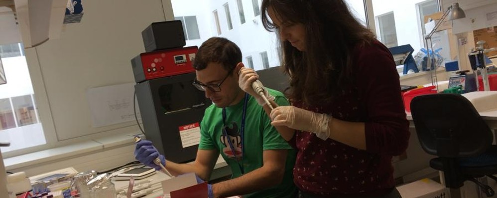 Luca, biotecnologo a Budapest  Verso una cura per la sindrome di Tourette